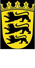 Rollgerüste Ulm